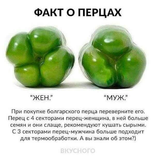 FB_IMG_1486319836397.jpg