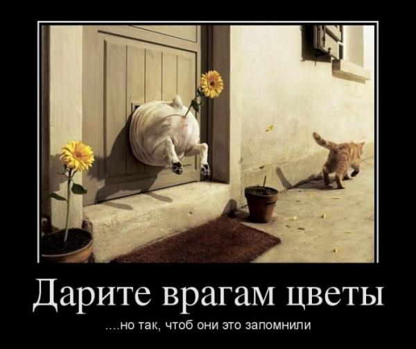 post-11218-0-04148300-1337271385_thumb.jpg