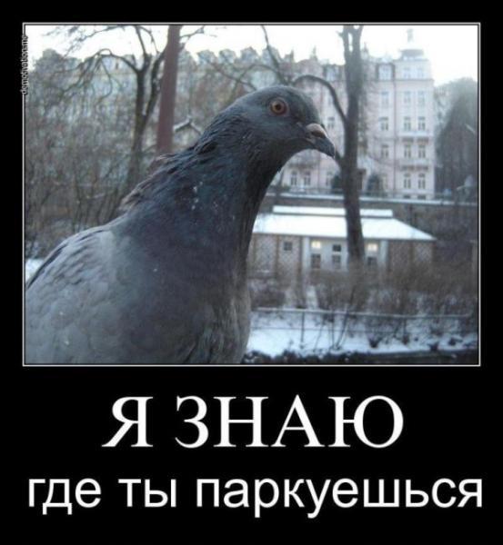 post-11218-0-42754800-1337208229_thumb.jpg