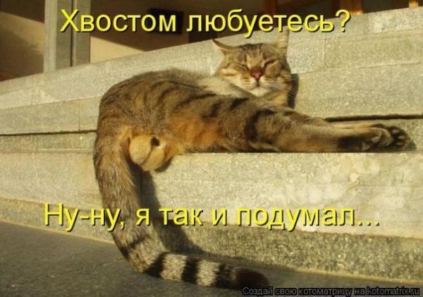 post-25494-0-21049600-1370175096_thumb.jpg