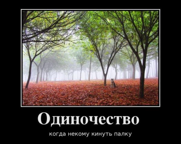 post-26406-0-70270800-1408603165_thumb.jpg