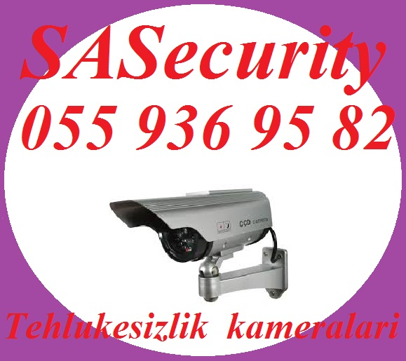 post-62801-0-45236000-1439970340.jpg