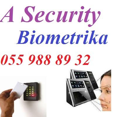 post-64005-0-13460600-1440743192.jpg
