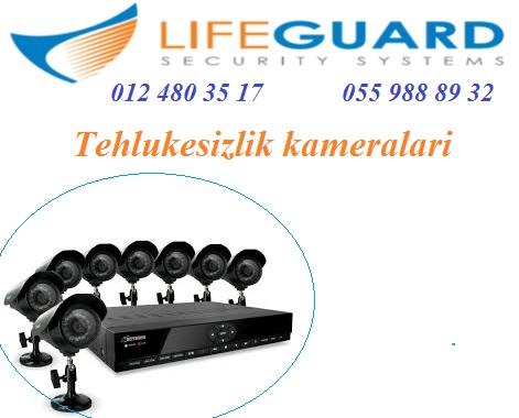 post-54076-0-14007600-1470297149.jpg