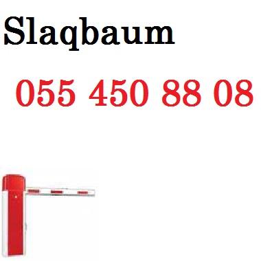 post-58511-0-81953800-1409572945.jpg