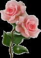 post-34272-1254510392_thumb.png