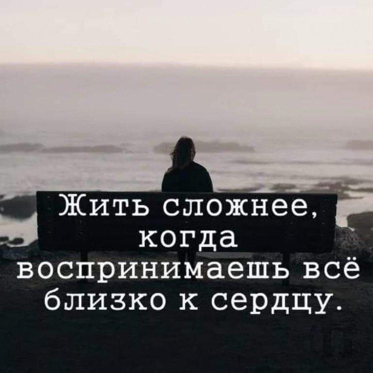 FB_IMG_1546516489882.thumb.jpg.852aff3dfe69be28638ee662c503b629.jpg