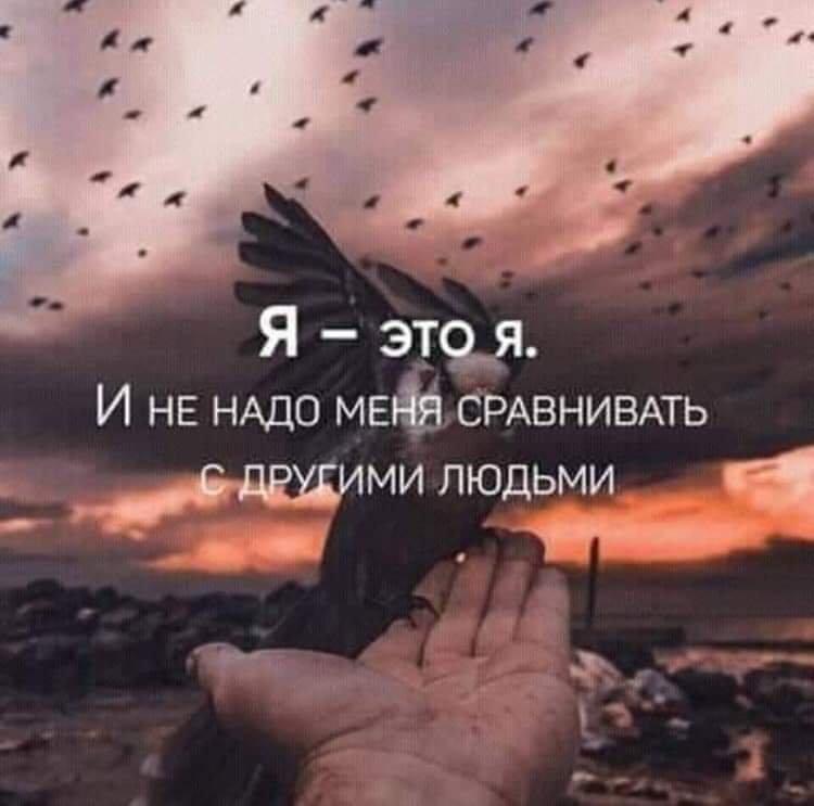 FB_IMG_1546516504332.jpg.9a46fe91cbfbfaf69727579a5ab6c6c9.jpg