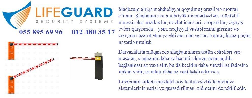 slaqbaum 1212.JPG