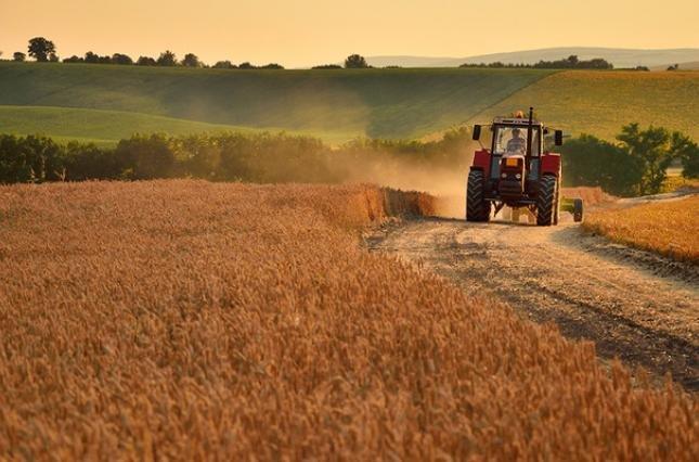 Traktor.jpg.d12df2482eb584c67c0c254d2e57f5e0.jpg
