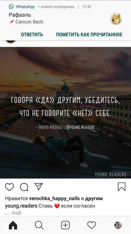 Screenshot_20200619-174255_Instagram.thumb.jpg.29a863c4f0b8c1d1ab064baf6730d5af.jpg